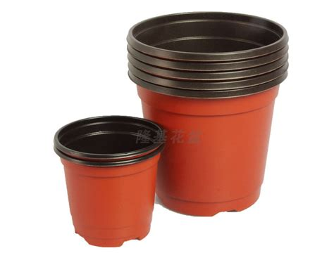 Plastic Garden Pots by Garden Supplies Plastic Flower Pot Color Flower
