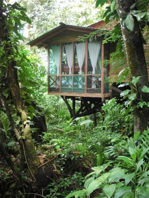 treehouse suite, outside view picture of ian anderson's