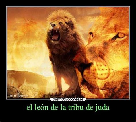 imagenes cristianas leones el le 243 n de la tribu de jud 225 jes 250 s el le 243 n de la tribu de
