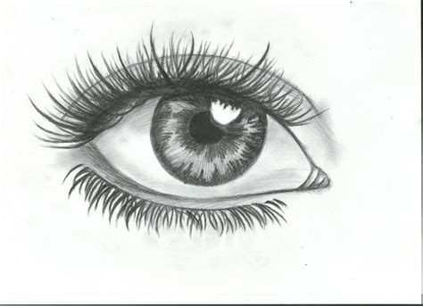 A Drawing Of An Eye by Best 25 Eye Sketch Ideas On Realistic Eye