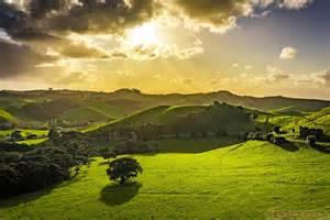 Landscape Pictures Nz Beautiful Landscape Photos In Waiheke Island New Zealand