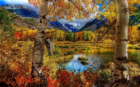 nature, Fall Wallpapers HD / Desktop and Mobile Backgrounds Fall Nature Wallpaper