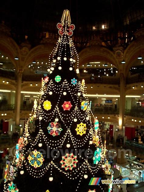 christmas tree in lafayette tree galeries lafayette photographs velowire thover photos