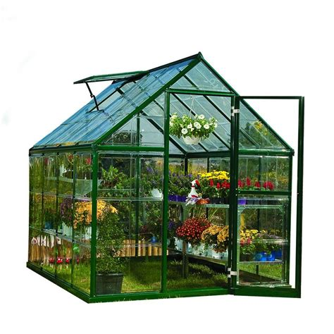 Small Greenhouses Home Depot Palram Harmony 6 Ft X 8 Ft Polycarbonate Greenhouse In
