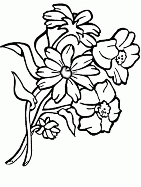 flowers page 2 bluebonnet flowers coloring pages flower5