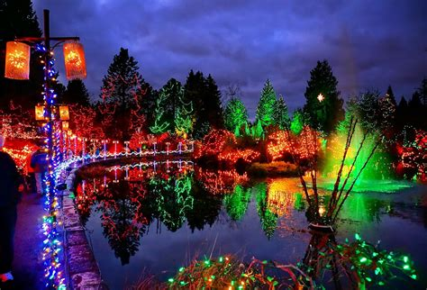 Botanical Garden Of Lights Festival Of Lights Event Package Truffles Foods