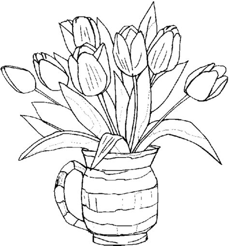 plants coloring pages preschool adult coloring pages flowers to download and print for free