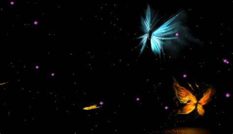 butterfly wallpaper for desktop with animation animated beautiful butterflies