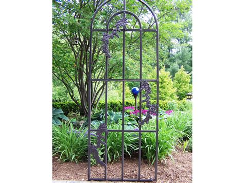 Ideas For Metal Garden Trellis Design Ideas For Metal Garden Trellis Design 20486