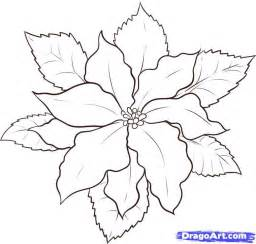 poinsettia color poinsettia coloring page coloring home