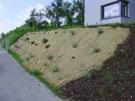planting for a steep garden bank google search