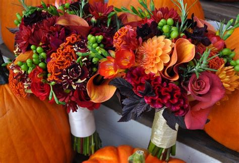 fall flowers wedding wedding flower glossary illustrated
