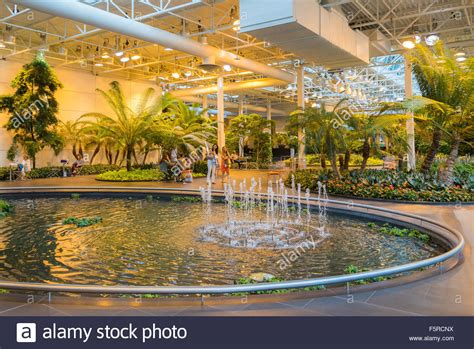 indoor park the devonian gardens year indoor park calgary alberta stock photo royalty