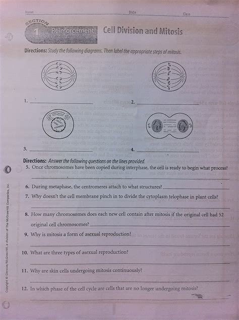 Section 1 Reinforcement Cell Division And Mitosis Worksheet Answers by Pmcs Science 3 Comprehensive Science A Bit Of