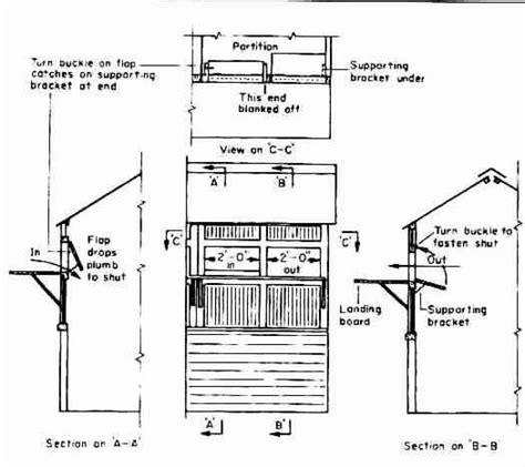 loft blueprints pigeon loft plans