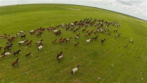 imagenes de paisajes ganaderos 4 caracter 237 sticas de la ganader 237 a extensiva sus pro y contras