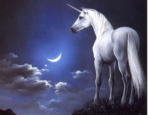 pante 243 n de juda imagenes wallpapers de la muerte iii imagenes de unicornios