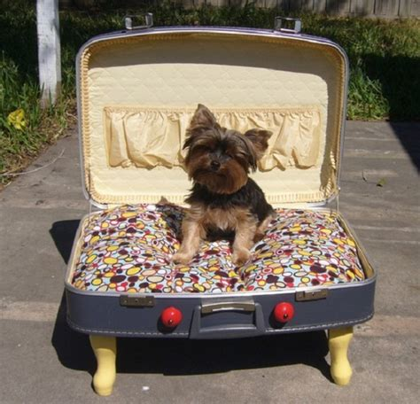 suitcase dog bed diy suitcase pet bed home design garden architecture