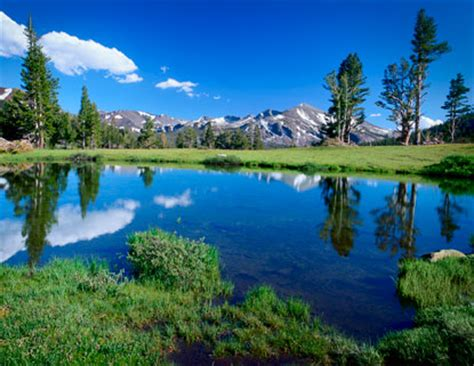 tuolumne meadows yosemite national park  national