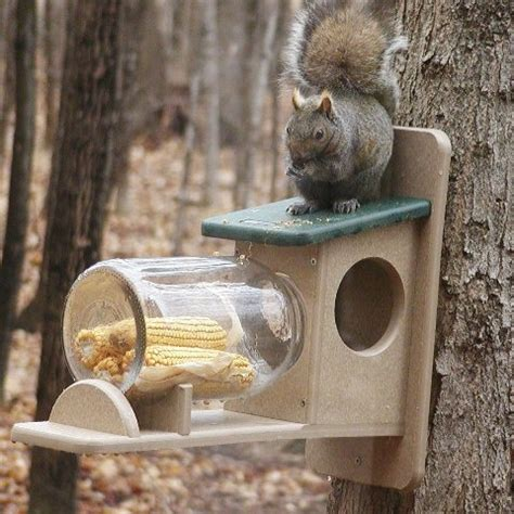 build squirrel feeder jar woodworking projects plans