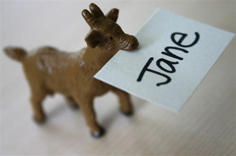 make place card holders communicating through small plastic animals family chic