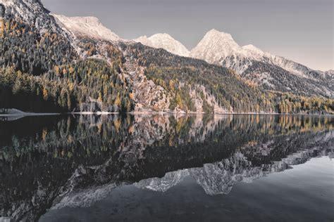 stock photo  alaska forest hd wallpaper
