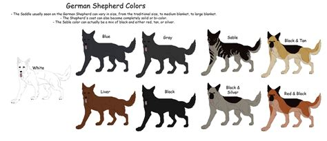 german shepherd color chart german shepherd colors by black tiger of evil on deviantart