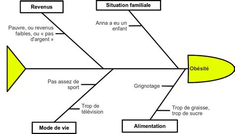diagramme d ishikawa exemple logistique la deuxi 232 me situation d 233 valuation en pr 233 vention sant 233