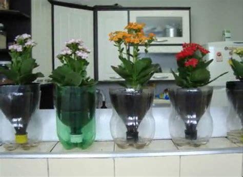 flores vasos de plastico de cafe papel macetas manualidades dia de la espa 231 o criativo vasos de planta reutilizando garrafas pet