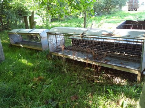 Sheep Hay Racks For Sale by Dispersal Sale Of Tractors Farm Machinery Effects