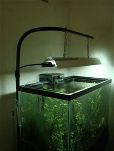 Diy Aquarium Light Fixture Aquarium Light Stand Diy Woodworking Projects Plans