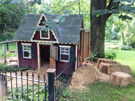 pig house design diary of a real life veterinarian house cleaning pig pen style