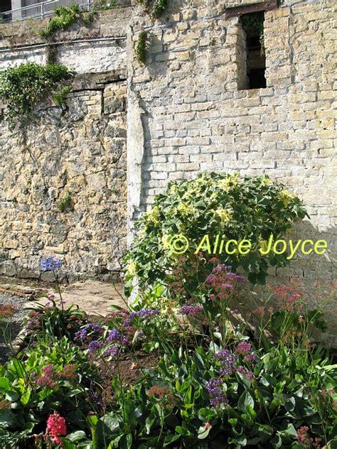 alcatraz gardens san francisco 171 alice s garden travel buzz