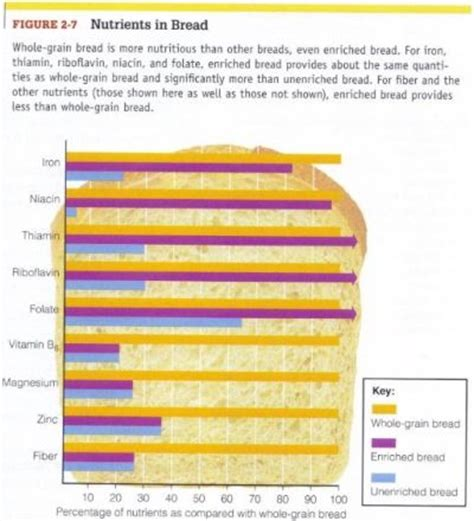 whole grains nutrients nutrition of a college student enriched grains vs whole