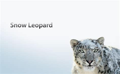 mac os x 10 6 snow leopard in one click virus