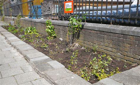 Guerilla Gardening by Guerrilla Gardening Wikiwand