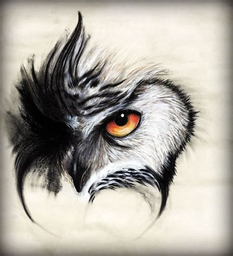 tattoo owl eyes best 25 owl eye tattoo ideas on pinterest owl drawings