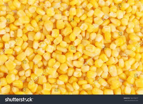 whole grain yellow corn tasty yellow grains corn whole background stock photo