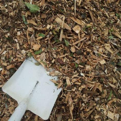 forest mulch