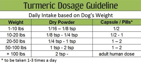 turmeric paste for dogs turmeric dosage for dogs the definitive guide turmeric for health