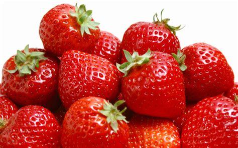 taosurphoa strawberries wallpapers