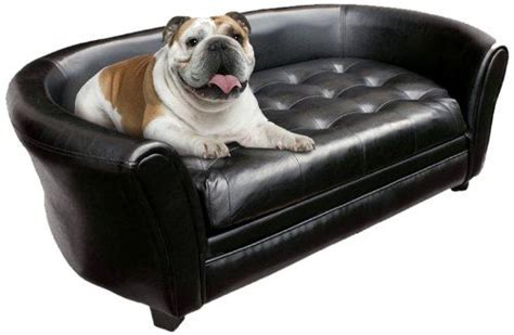 dogs couch 7 best images about dog sofas on pinterest home dog