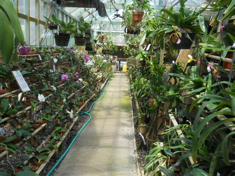 South Texas Botanical Gardens Nature Center Corpus Botanical Gardens Corpus Christi