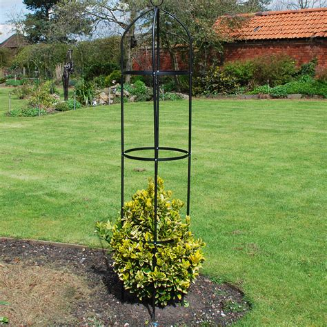 frame for climbing plants 1 9m garden obelisk support metal climbing plant flowers