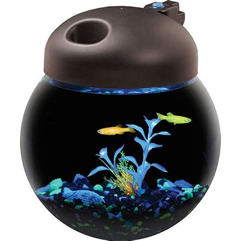 betta fish tank light aqua culture betta fish globe bowl aquarium with mutli