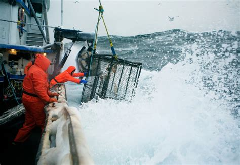 corey arnold s photos of crab fishing on the bering sea business insider