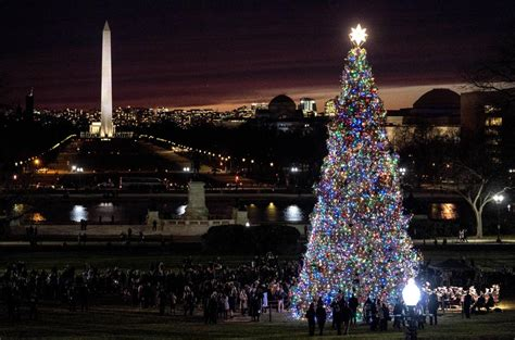 visiting national christmas tree at night end of a journey montana engelmann spruce lights up the darkness at u s capitol local
