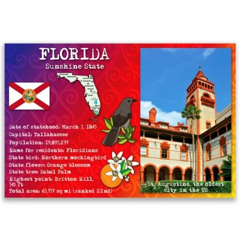 Florida State Funded Detox Centers by Florida State Facts Postcard