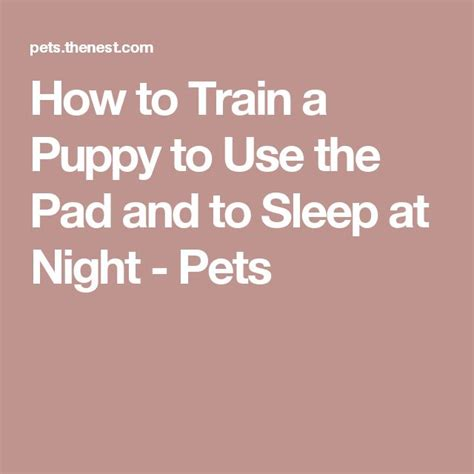 how to train your dog to use the bathroom outside how to train a puppy to use the pad and to sleep at night