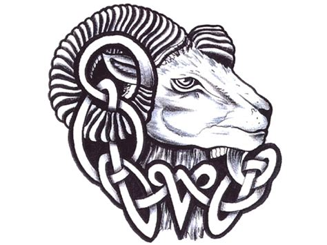 tribal ram tattoo http bodyink click here aries